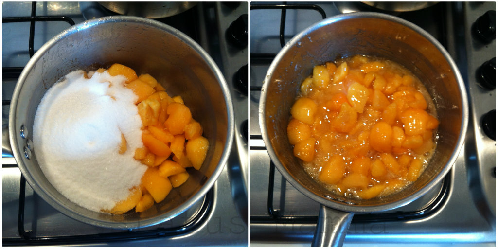 Composta di albicocchestatusmamma fotot ricette composta marmellata confettura frutta blog cucinare tutorial fotografico