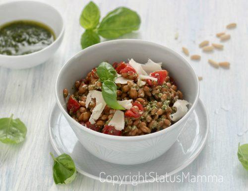 Insalata fredda di farro con salsa veloce al basilico e pomodorini