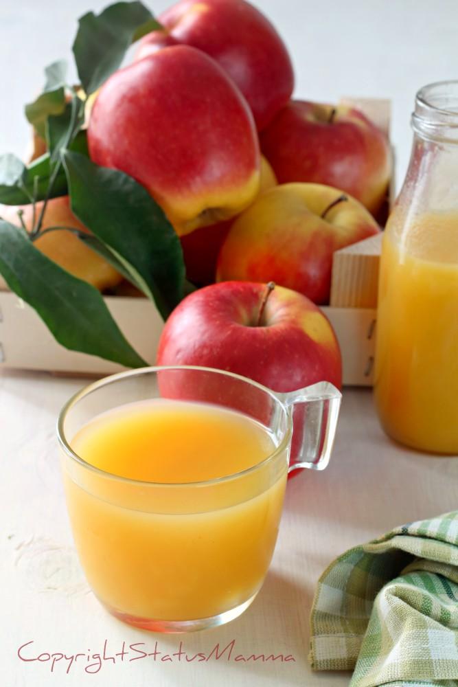 Come fare il succo di frutta alle mele fatto in casa