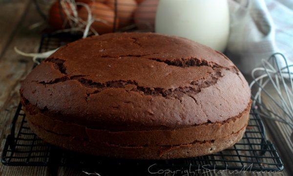 Torta al cacao facile anche bimby