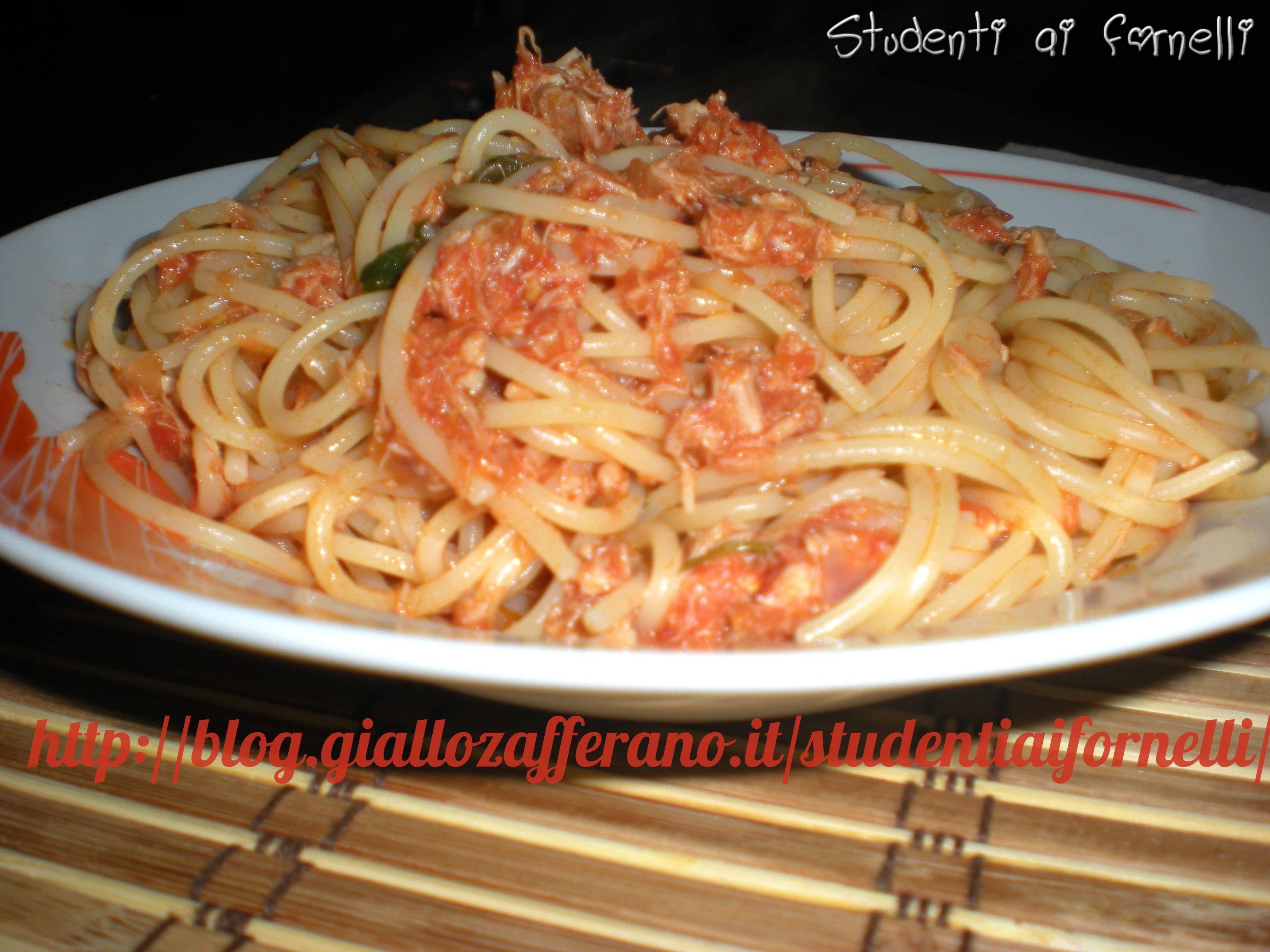 Spaghetti al sugo con tonno ricetta semplice studenti for Spaghetti ricette