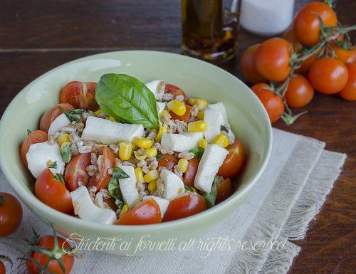 Insalata di farro con pomodori e mozzarella