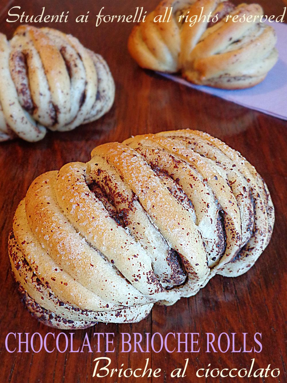 chocolate brioche rolls ricetta brioche al cioccolato facili