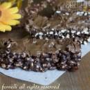 Barrette di riso soffiato al cioccolato