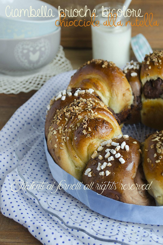 ciambella brioche bicolore chiocciole alla nutella soffici golose ricetta brioche al cacao alla nutella soffici