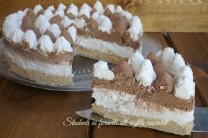 Torta gelato vaniglia e cioccolato