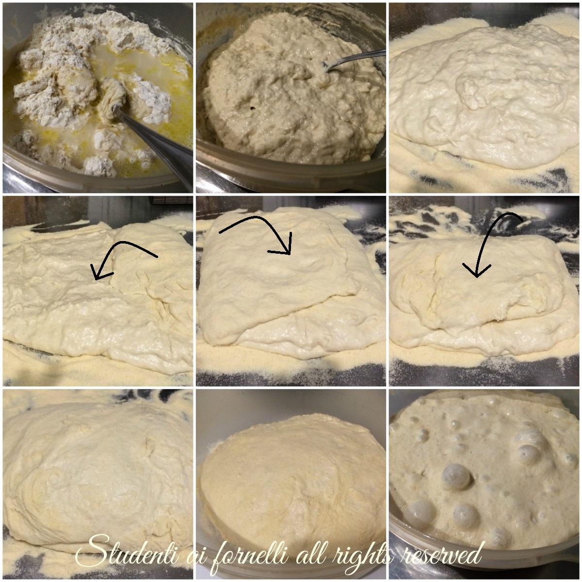 pizza bonci senza impasto ad alta idratazione passo passo 24 ore di  lievitazione passo passo ricetta