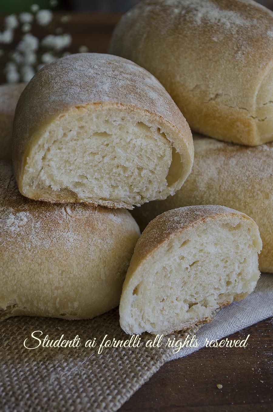 ricetta panini di semola all'olio morbidi ricetta panini soffici ricetta con lievito madre