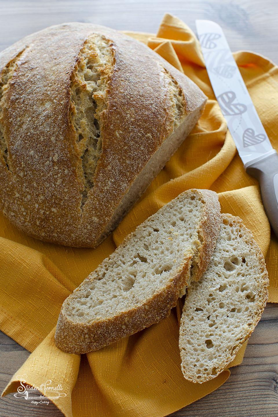 ricetta pane integrale fatto in casa con lievito di birra o madre ricetta