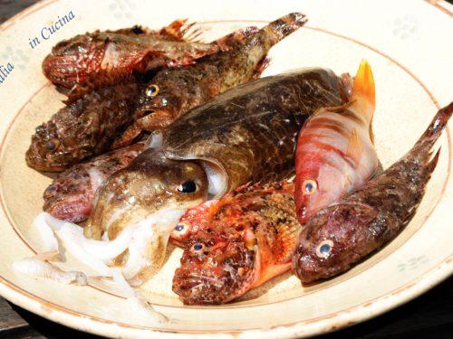 Zuppa di Pesce con Scorfani, Lappane e Seppie