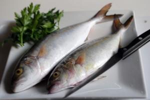 Pesce Serra al forno e con gli scarti . . .