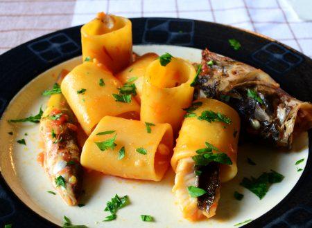 Pasta con Ragu di Pesce da Zuppa