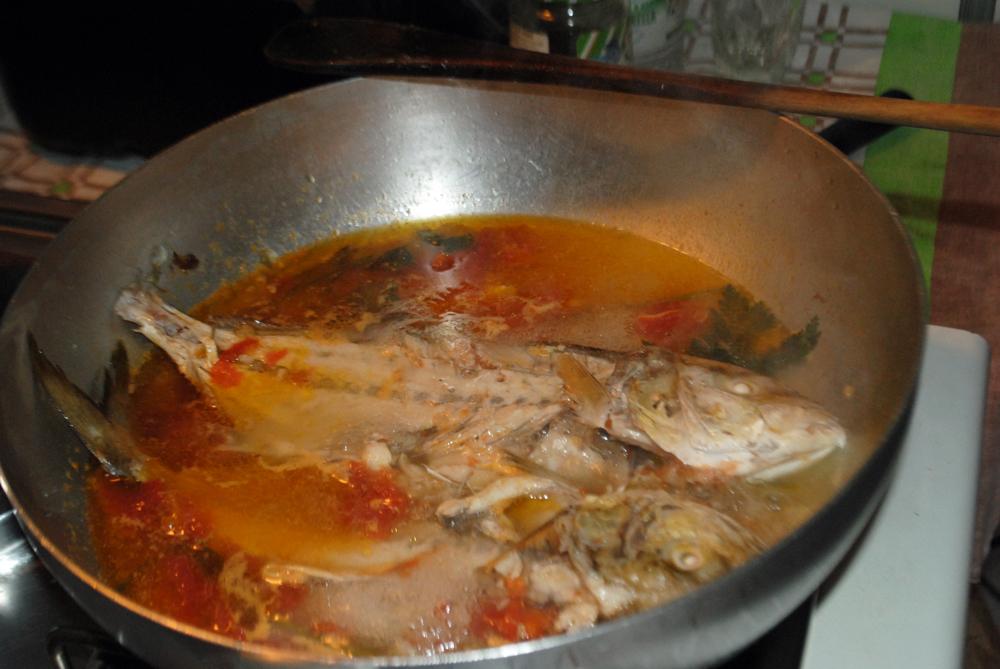Pastina alla Marinara con Tartare di Pesce marinata