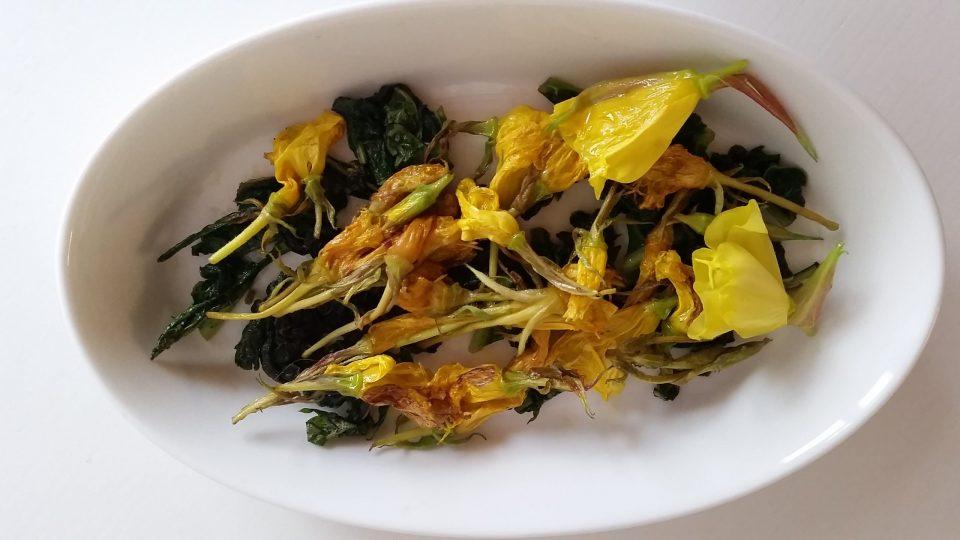Assaggio di fiori di Enotera e foglie di Consolida