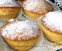 Muffin yogurt e panna