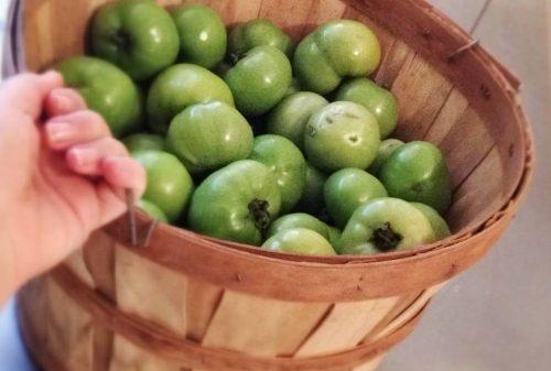 Salsa di pomodoro verde