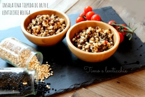 insalatina orzo e lenticchie beluga