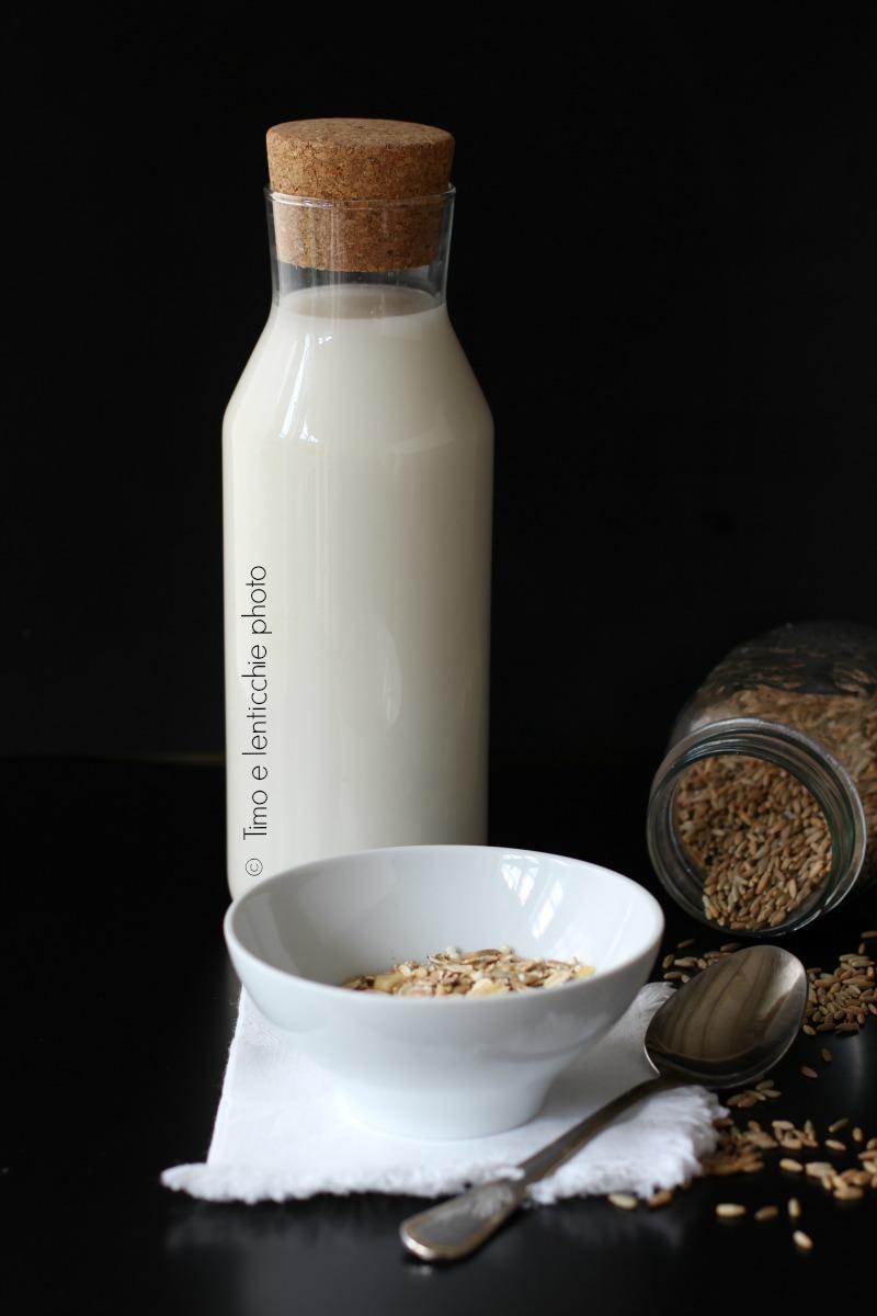 latte di avena 1