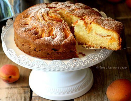 Torta soffice con albicocche gluten free