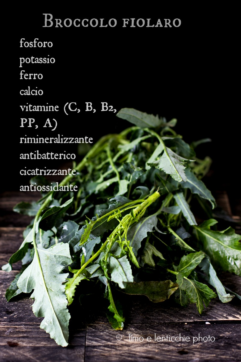 broccolo fiolaro di creazzo proprietà