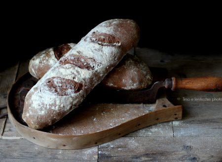 Pane nero ai cereali con mirtilli rossi