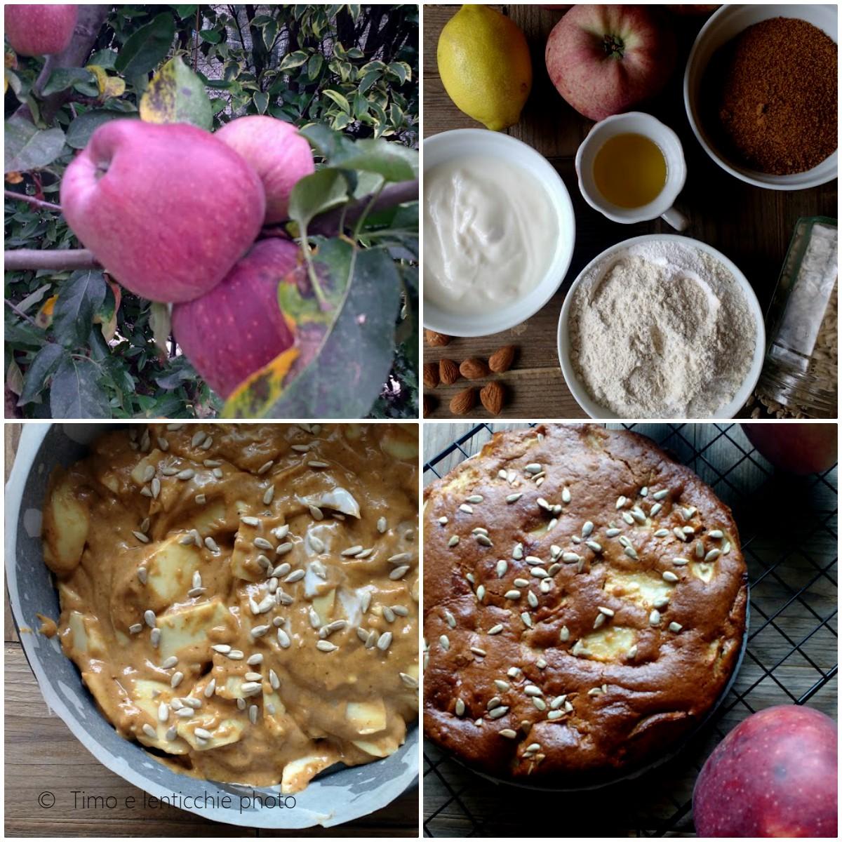 Torta di mele semplice golosa veg 1