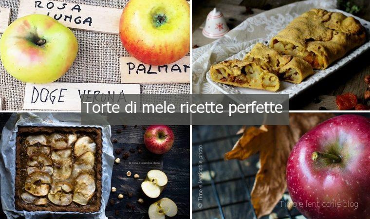 Torte di mele ricette perfette