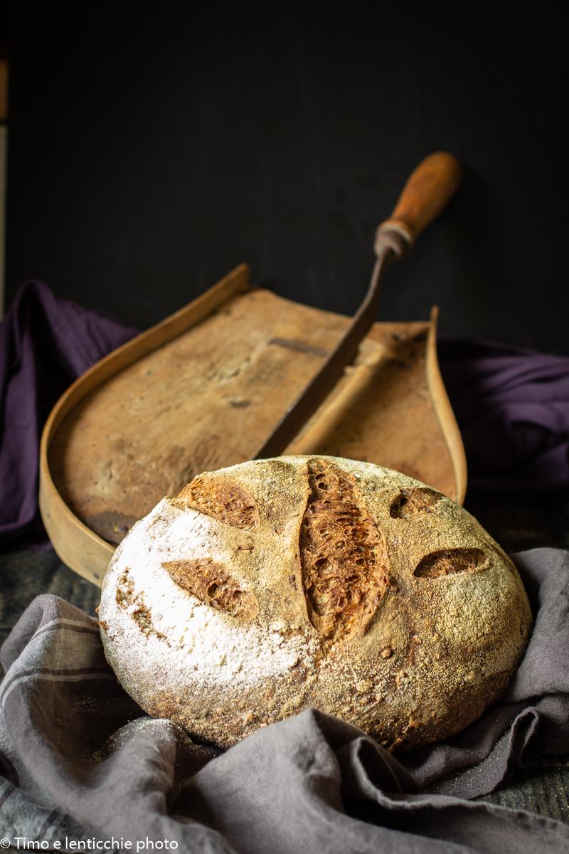 pane quotidiano con lievito madre 2
