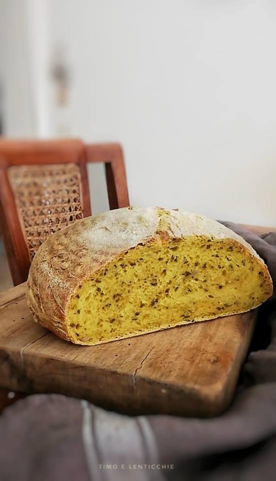 pane quotidiano con lievito madre 4