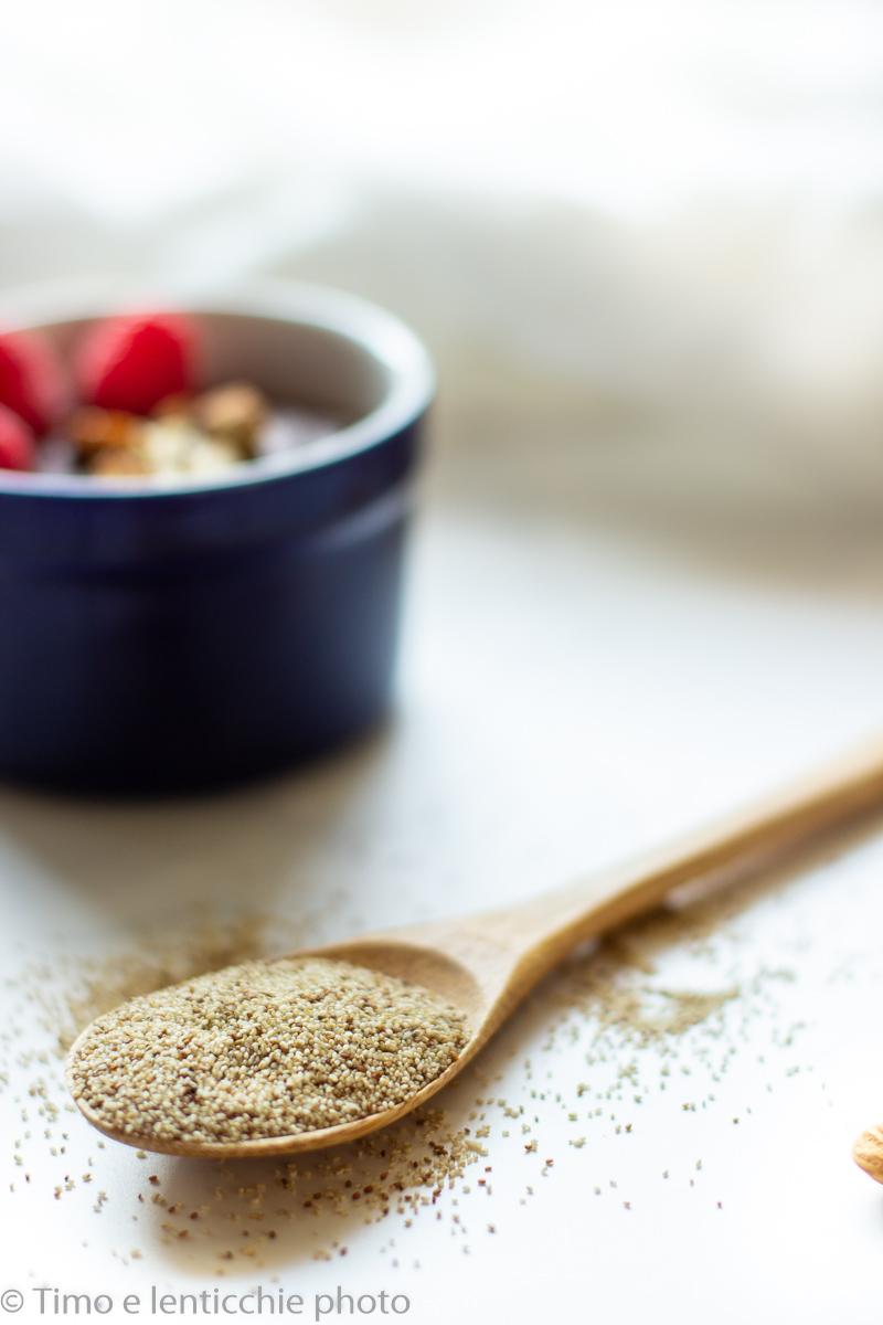 Pudding al teff e cacao