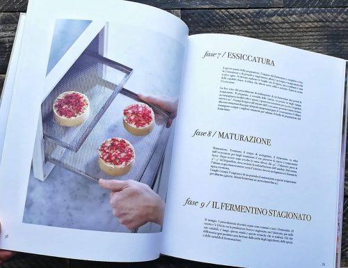 Fermentini – recensione del libro