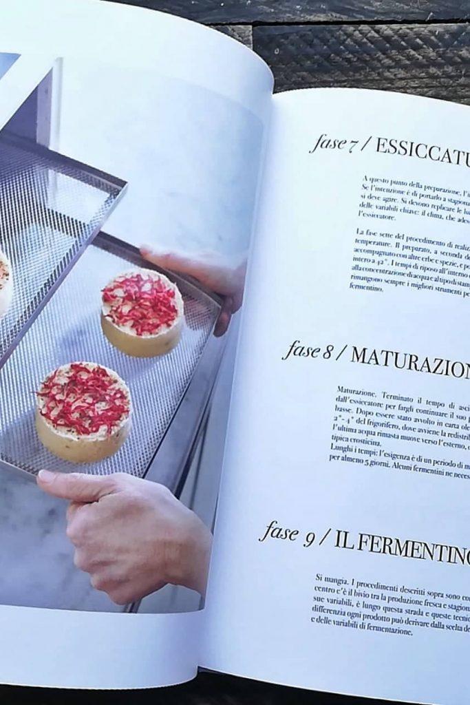 fermentini recensione libro 1