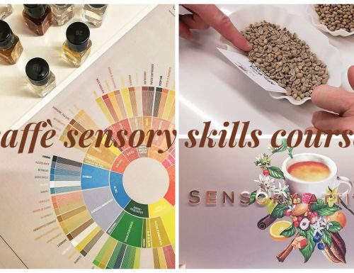 Caffè e il sensory skills course