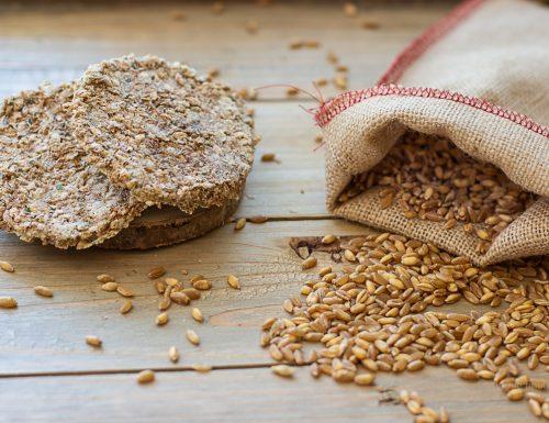 Il pane degli Esseni  germogliato –  gallette crudiste