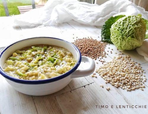 Verza con orzo e lenticchie di Sonia Catenacci