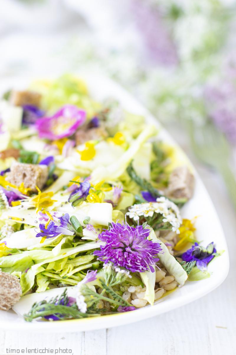 insalata d'orzo e fiori di montagna (2)