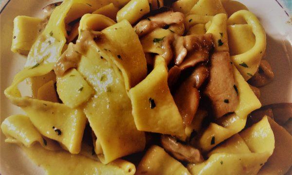 Pappardelle, curcuma e funghi porcini