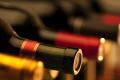 Benvenuto Magnus! Scopriamo il mondo del vino - Welcome Magnus! Let's discover the world of wine