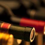 Benvenuto Magnus! Scopriamo il mondo del vino – Welcome Magnus! Let's discover the world of wine