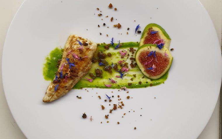 Gallinella di settembre (Gallinella e aceto balsamico, salsa di cicoria, fichi e frisella al nero di seppia)