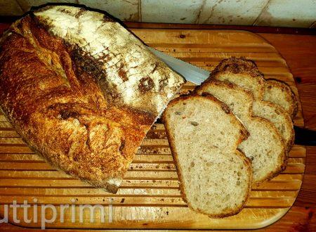 Pane in pentola a lievitazione naturale – Bimby