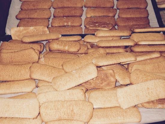 Biscotti Plasmon con Bimby