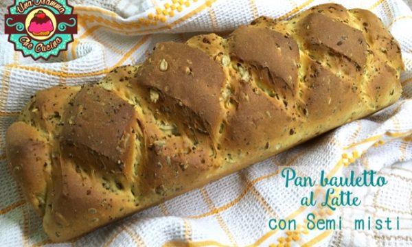 Pan bauletto al Latte con Semi misti