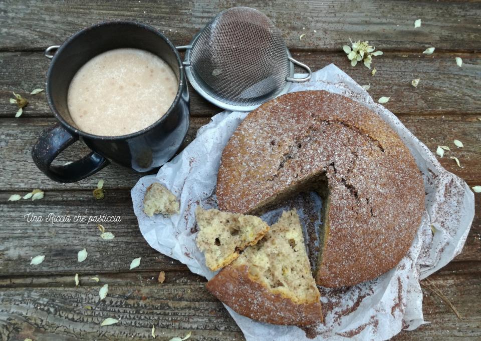 torta soffice vaniglia cannella e cacao