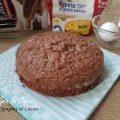 Pan di Spagna al cacao con metodo a caldo