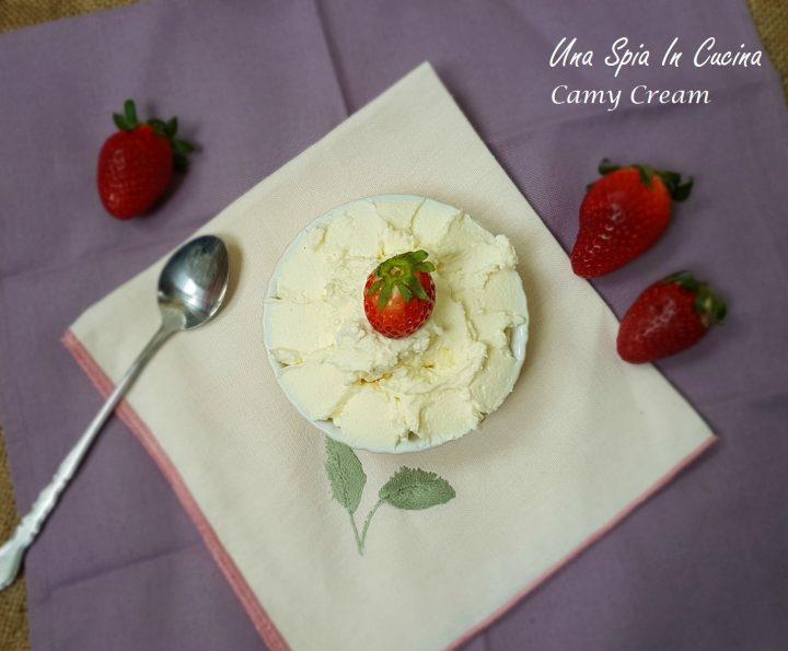 Camy cream per farcire torte, crostate e cupcake