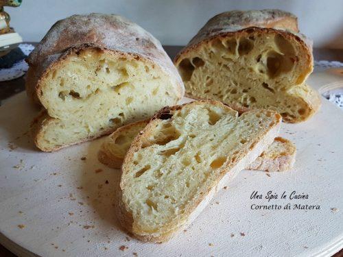 Pane cornetto di Matera con lievito madre