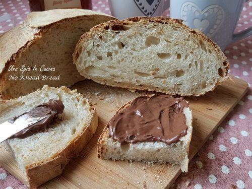No Knead Bread con lm e farina con proteine 10,5