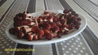 Risotto con melagrana e funghi