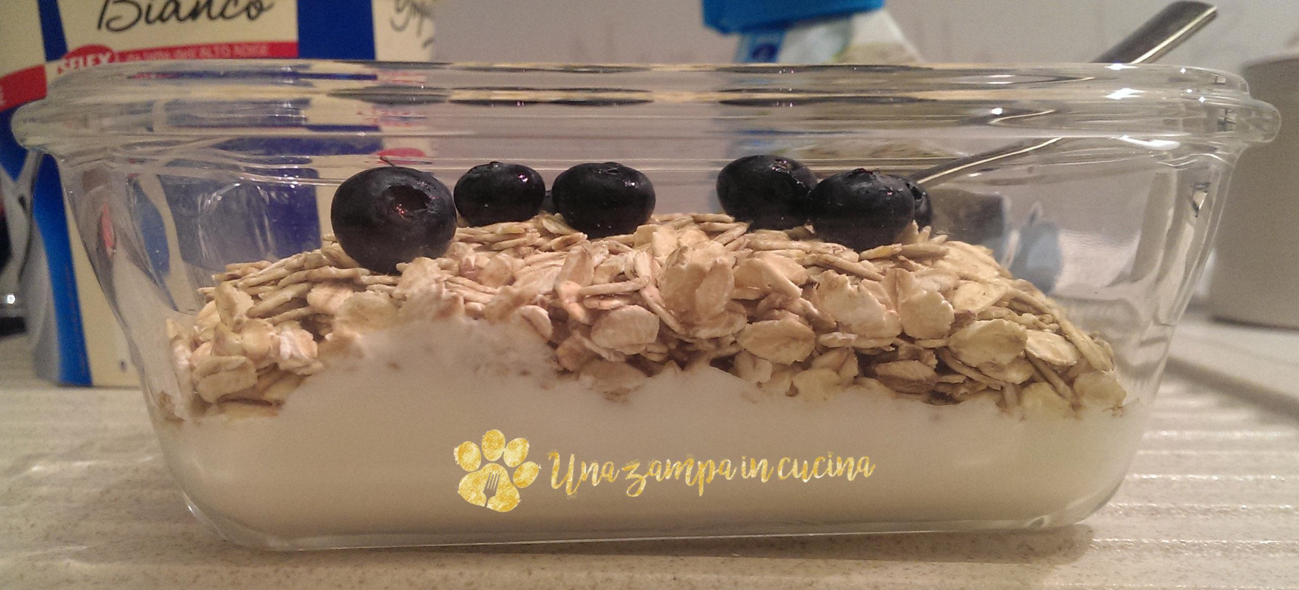 Yogurt avena mirtilli: la nostra colazione con yogurt avena e mirtilli, ricca di proteine e altre sostanze benefiche. Prova anche tu lo yogurt con avena:-)
